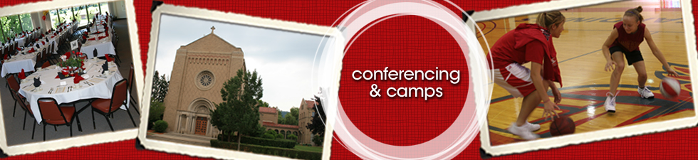 VIS_Conferencing&Camps